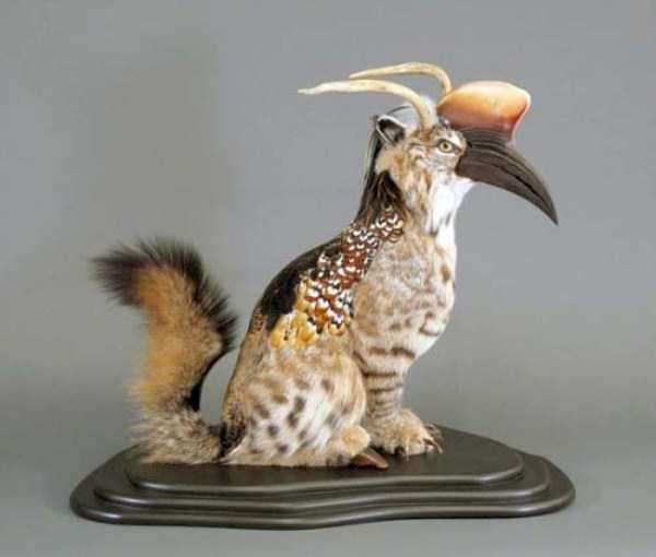 creepy-taxidermy (11)