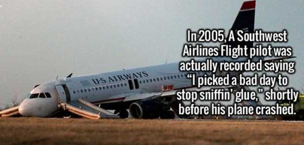 fun-amusing-interesting-facts (5)