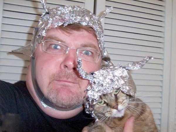 funny-cats-pics (31)