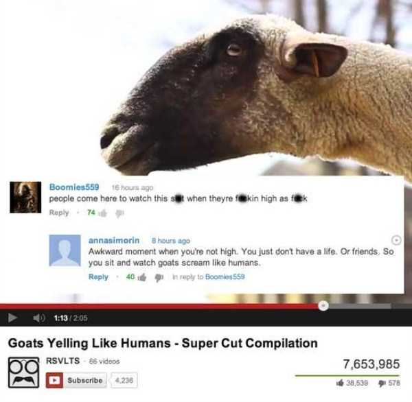 funny-hilarious-youtube-comments (36)