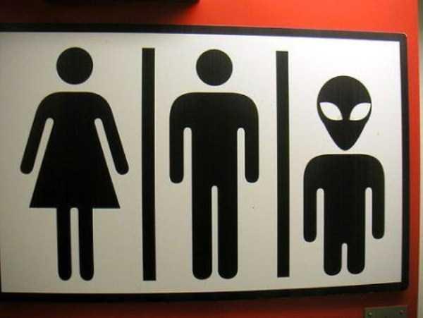 funny-toilet-plates (32)