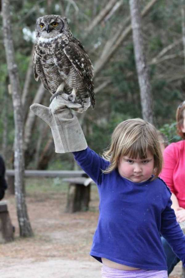 girl-holding-an-owl (1)