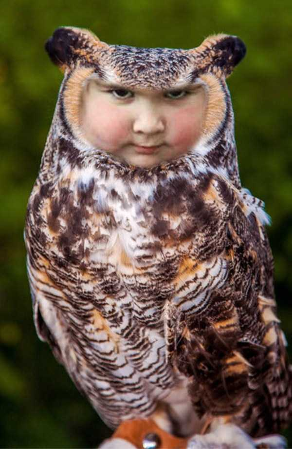girl-holding-an-owl (13)