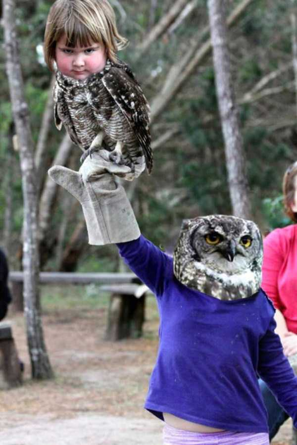 girl-holding-an-owl (14)