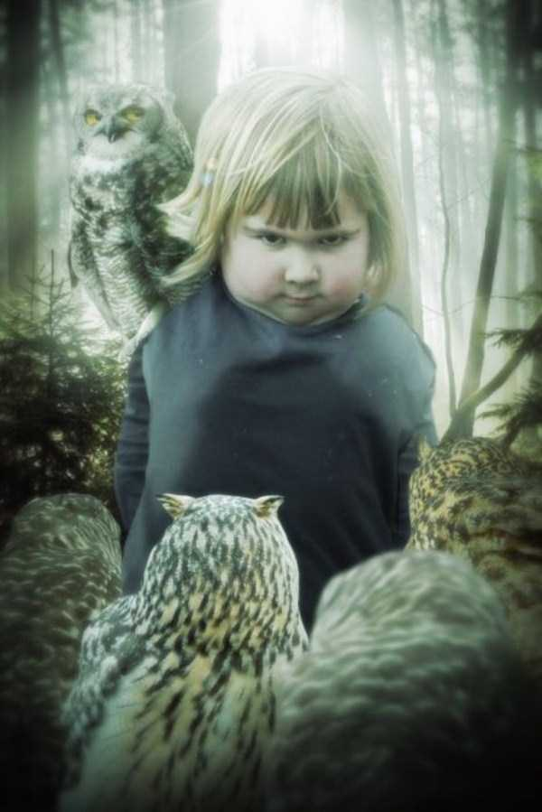 girl-holding-an-owl (2)