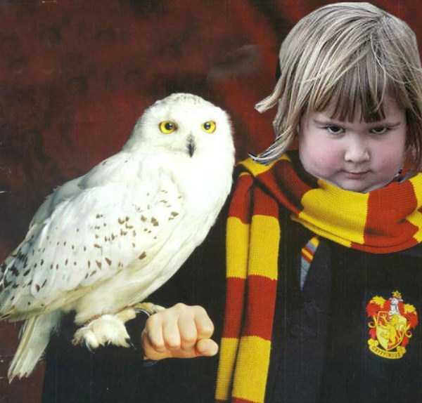 girl-holding-an-owl (4)