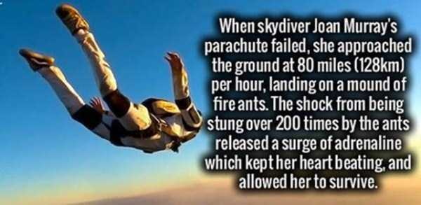 impressive-interesting-facts (16)