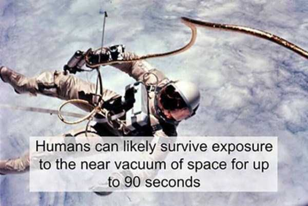 impressive-interesting-facts (25)