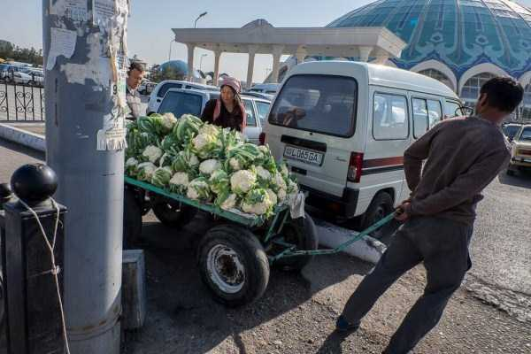 life-in-tashkent-uzbekistan (17)