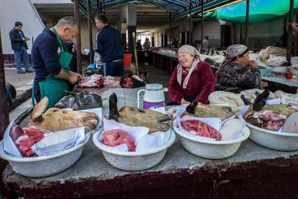life-in-tashkent-uzbekistan (2)
