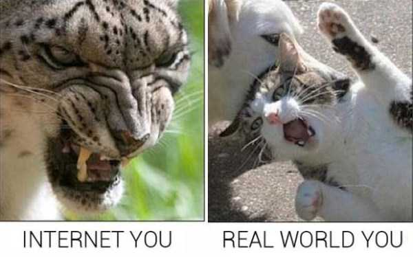 life-on-internet-vs-life-in-real-life (14)