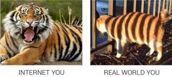 life-on-internet-vs-life-in-real-life (3)
