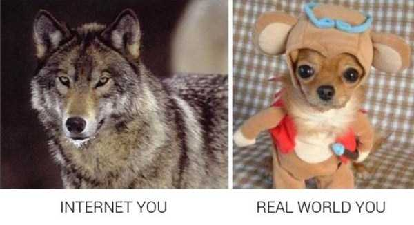 life-on-internet-vs-life-in-real-life (9)
