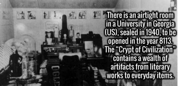 cool-facts (16)