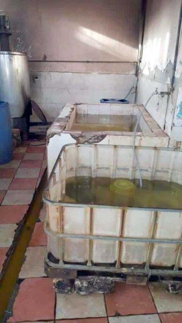 juice-production-in-egypt (12)