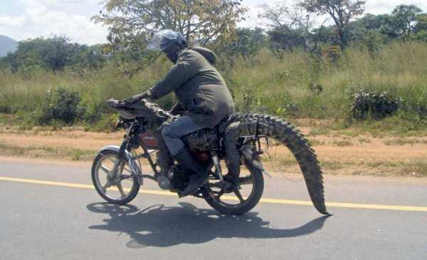 meanwhile-in-africa (32)