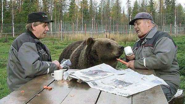 meanwhile-in-russia (8)