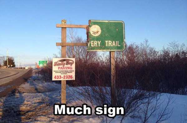 pics-with-funny-captions (13)