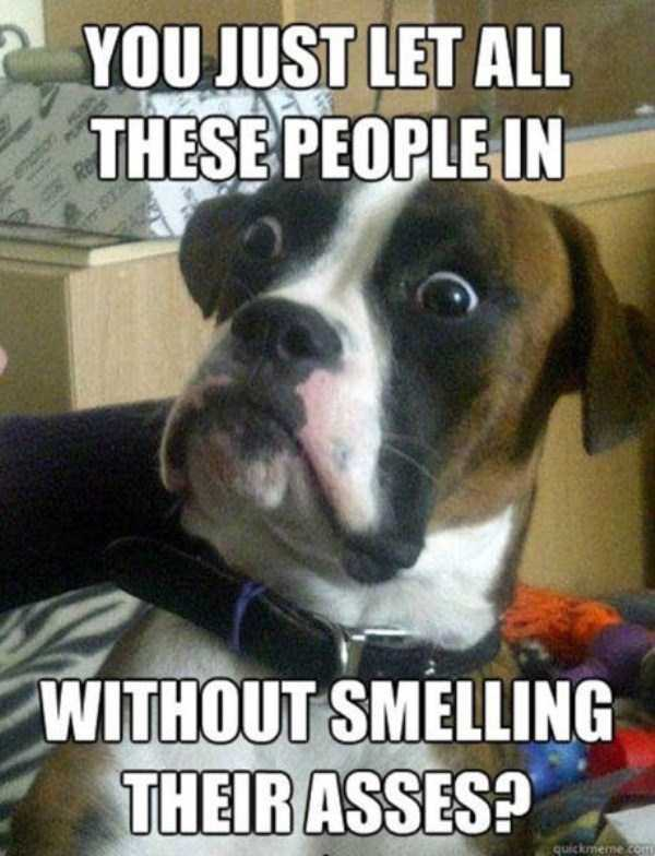 pics-with-funny-captions (23)