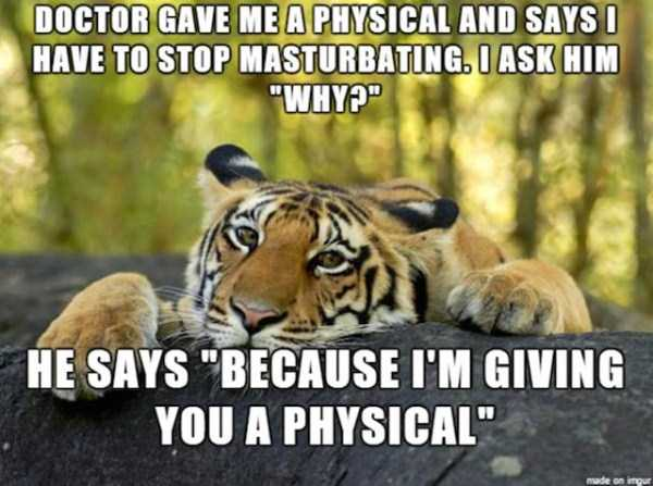 pics-with-funny-captions (49)
