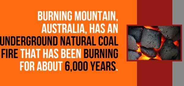 australian-facts (14)