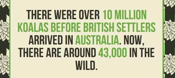 australian-facts (23)