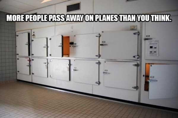 flight-attendants-weird-things (11)