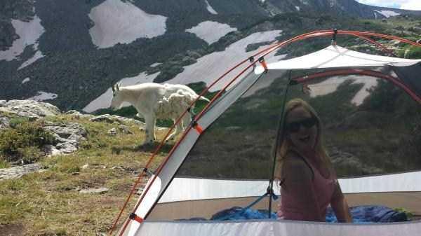 funny-camping-photos (42)