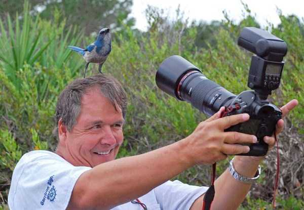 nature-wildlife-photographers (12)