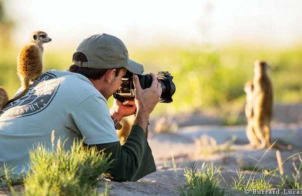 nature-wildlife-photographers (13)
