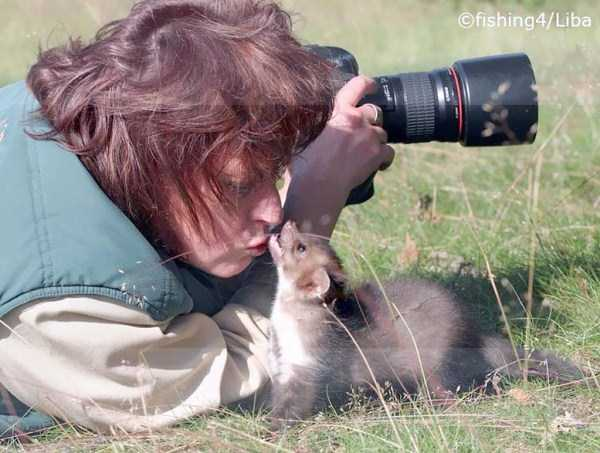 nature-wildlife-photographers (15)