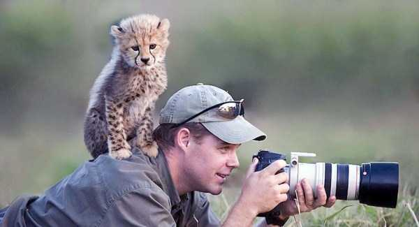 nature-wildlife-photographers (18)