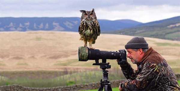 nature-wildlife-photographers (19)