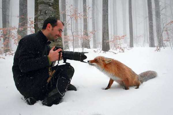 nature-wildlife-photographers (2)