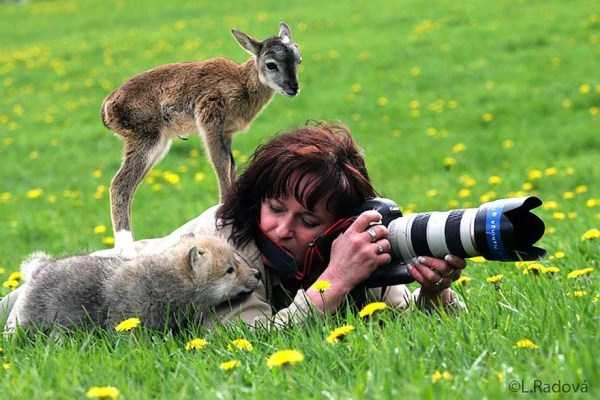 nature-wildlife-photographers (20)