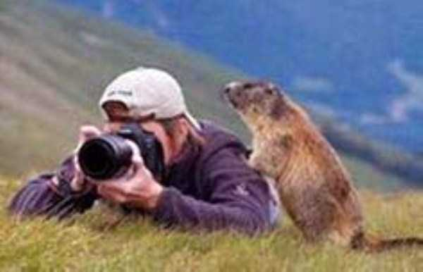 nature-wildlife-photographers (25)