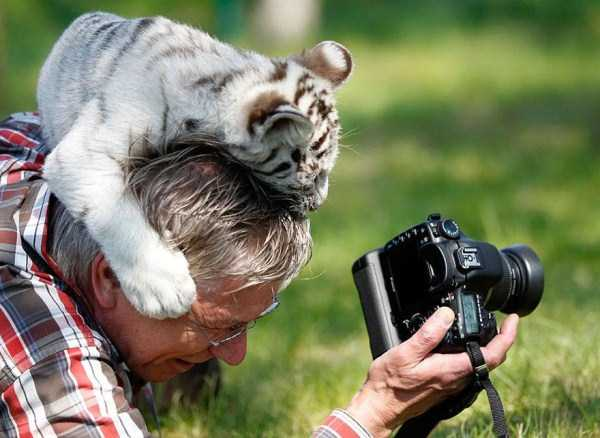 nature-wildlife-photographers (3)