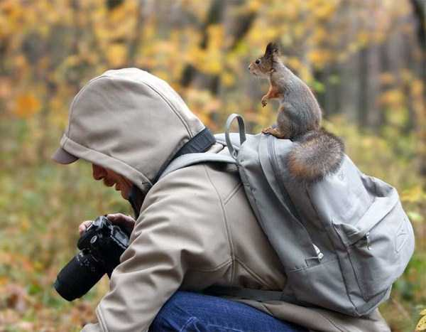 nature-wildlife-photographers (5)