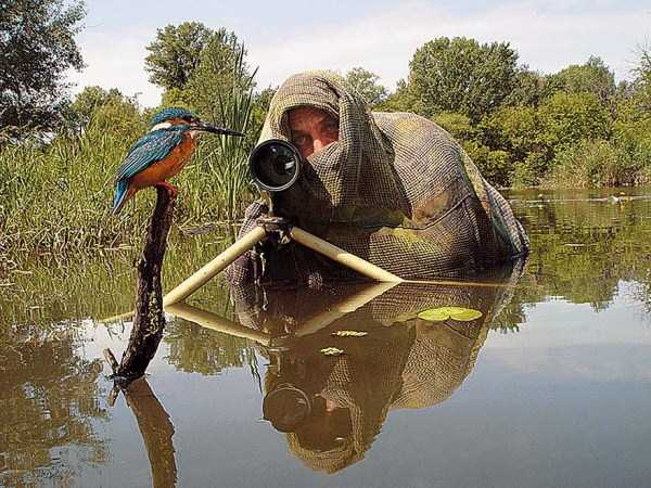 nature-wildlife-photographers (9)