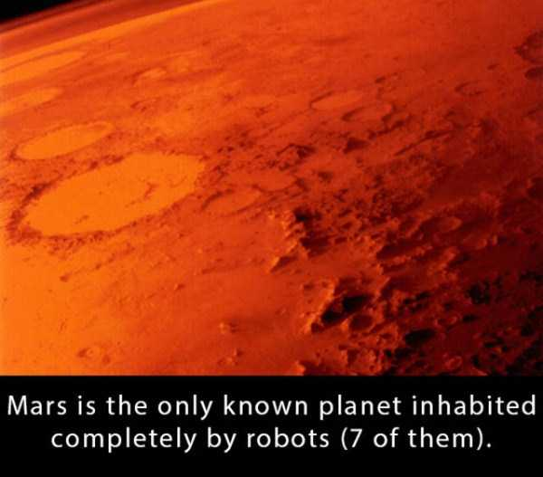 random-cool-fun-facts (22)