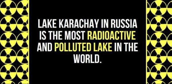 russia-facts-trivia (26)
