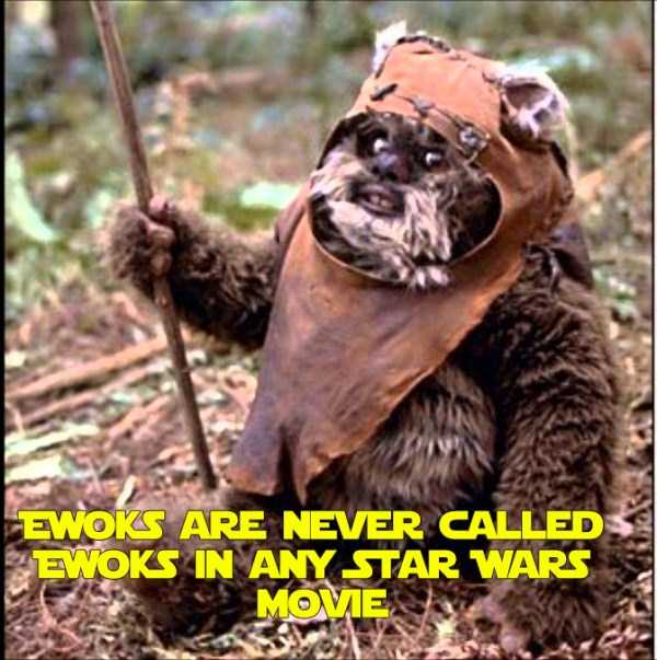 star-wars-facts-trivia (25)