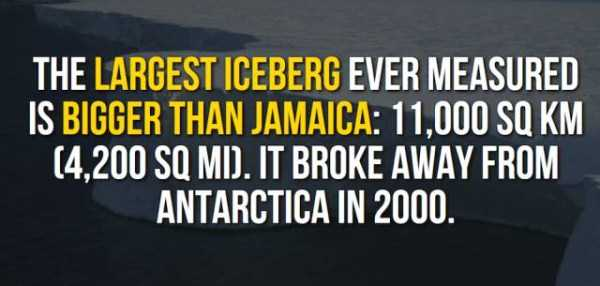 things-facts-about-antarctica (11)