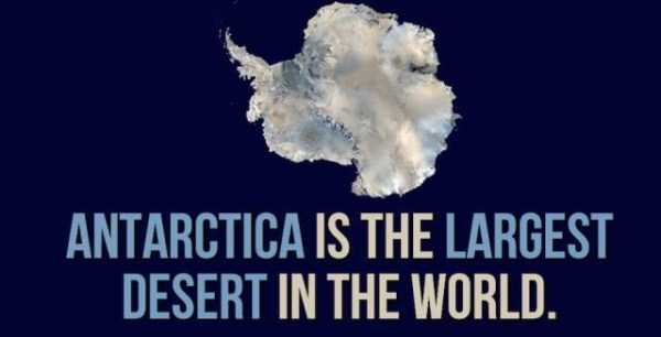 things-facts-about-antarctica (16)