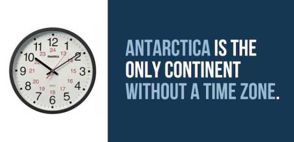 things-facts-about-antarctica (26)
