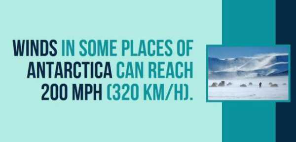 things-facts-about-antarctica (4)