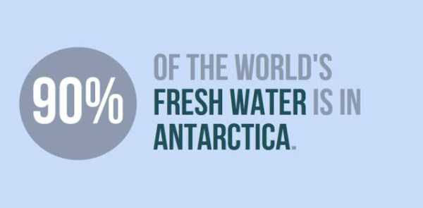 things-facts-about-antarctica (5)