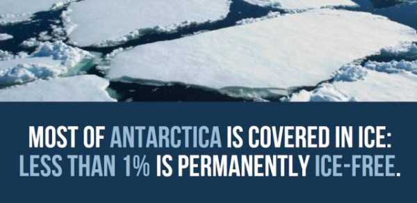 things-facts-about-antarctica (6)