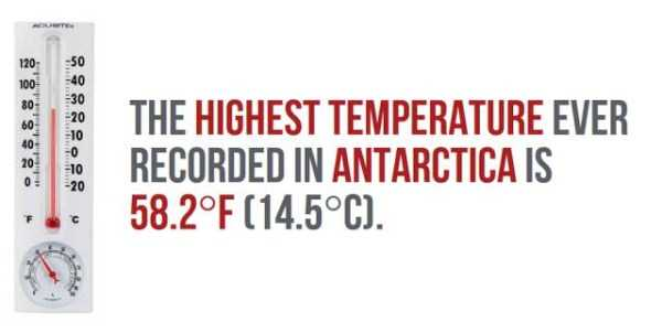 things-facts-about-antarctica (8)