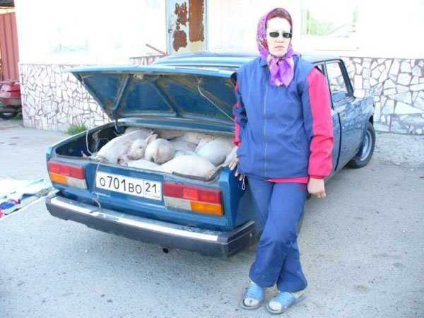 Funny-WTF-Russia-Photos (30)